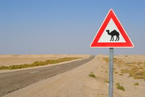 Camels crossing road sign von Sami Sarkis Photography