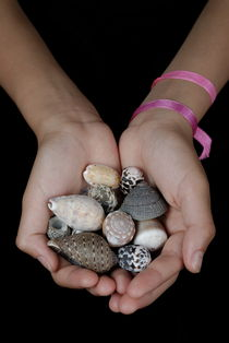 Girl (13-14 years) holding shells in clasped hands by Sami Sarkis Photography
