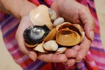Woman holding shells by Sami Sarkis Photography