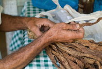 Dried tobacco leaves in man's hands by Sami Sarkis Photography