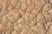 Patterns in dry by Sami Sarkis Photography