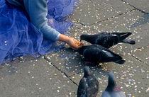 Rm-feeding-girl-pigeons-san-marco-square-ita071