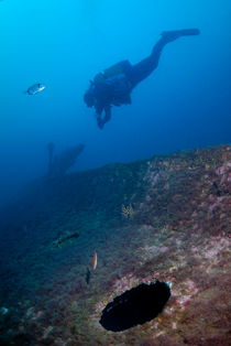 Diver exploring shipwreck by Sami Sarkis Photography