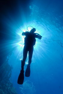 Silhouette of scuba diver rising to surface in sea by Sami Sarkis Photography