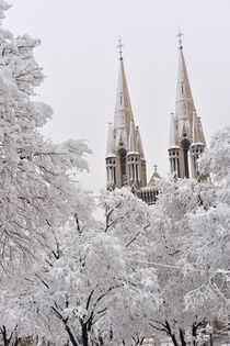 Snow on bell towers and trees by Sami Sarkis Photography