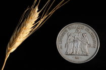 Wheat next to a French fifty franc coin by Sami Sarkis Photography