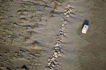 Caravan abandoned on beach by Sami Sarkis Photography
