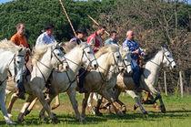 Camargue cowboys riding horses by Sami Sarkis Photography