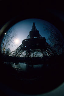 Eiffel Tower surrounded by bare trees on a winter's day by Sami Sarkis Photography