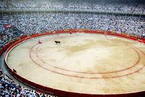 Rf-bullfighting-bullring-crowd-fiesta-pamplona-cor001