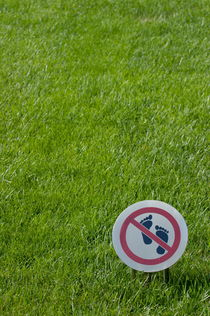 Warning sign on a grassy lawn by Sami Sarkis Photography