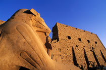 Rf-entrance-karnak-temple-unesco-egy187