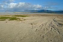 Bottom sand of Flamingo lake estuary at low tide von Sami Sarkis Photography