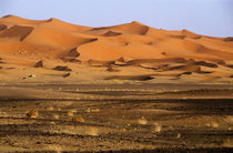 Rm-desert-morocco-remote-sand-dunes-scenic-lds035