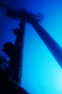 Looking up at the mast of the Dalton Shipwreck by Sami Sarkis Photography