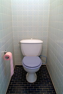 Rf-bathroom-restroom-tiled-toilet-var476
