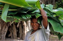 Rm-carrying-on-head-leaves-vanuatu-woman-vt254
