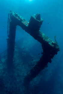 Rf-decay-maldives-sea-shipwreck-uwmld0283