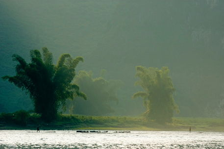Rm-bamboo-li-jiang-river-lush-misty-trees-chn1670