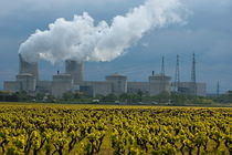 Rf-chimneys-drome-nuclear-smoke-vineyard-idy132