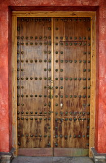 Spiked wooden door by Sami Sarkis Photography