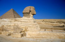 Profile of the Great Sphinx with the Great Pyramid of Giza in the background by Sami Sarkis Photography