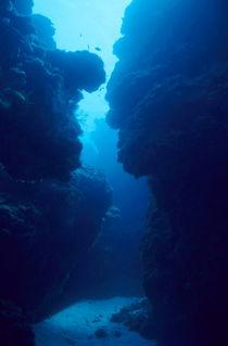 Rm-mexico-palancar-reef-rocks-underwater-uwmex011