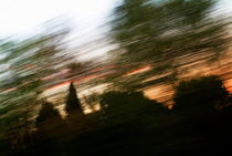 Rf-blurry-clouds-forest-motion-silhouette-trees-otr0550