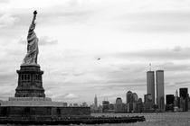 Tourists visiting the Statue of Liberty by Sami Sarkis Photography
