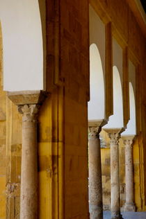 Rf-arches-cathedral-cordoba-columns-adl0498