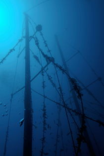 Rm-decay-fish-france-masts-mysterious-shipwreck-uw610