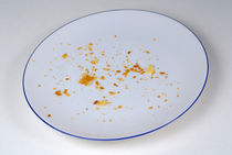Rf-crumbs-empty-pie-crumbs-plate-cpt0027