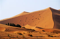 The Great Merzouga Dune von Sami Sarkis Photography