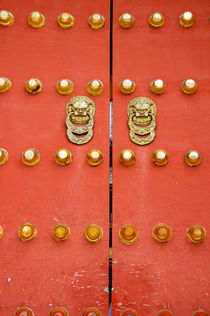 Rf-beijing-decorated-door-gate-temple-heaven-chn0129