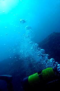 Rf-bubbles-discovery-diver-scuba-diving-sea-uw334