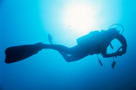 Scuba – Getting Started & Next Steps