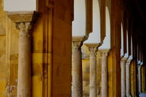 Rf-arches-cathedral-cordoba-columns-adl0497