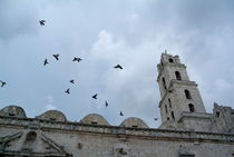 Birds flying above the basilica and the monastery of Saint Francis of Assisi (Basilica Menor de San Francisco de Asis) in Havana by Sami Sarkis Photography