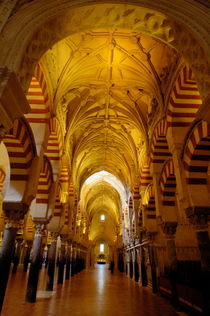 Rm-cathedral-ceiling-cordoba-mezquita-pillars-adl0591