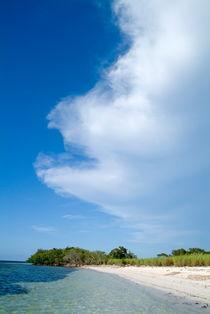 Rf-beach-cayo-jutias-cuba-idyllic-scenics-sea-cub0545