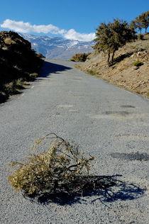 Road 411 above Capileira village in the Alpujarras mountains von Sami Sarkis Photography