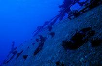 The Belama Shipwreck Porthole von Sami Sarkis Photography