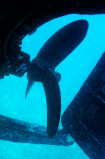 View of the propeller and rudder of a wrecked ship underwater. by Sami Sarkis Photography