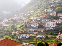 Pastoral Madeira by Jean-Pierre Arsenault