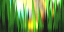 Zitronengras. by Bernd Vagt