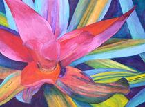 Bromeliad Pink von Margaret Saheed
