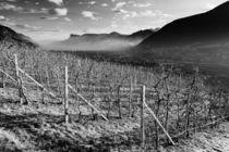 Südtirol-Warten auf den Frühling by Jürgen Klust