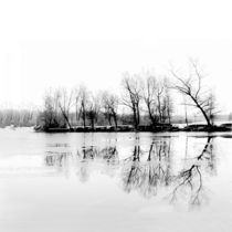 Cold-silence-ii-dsc-0014-1-modified2-part-bw-mod-mod2-framed-for-print-1x1