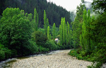 Blacks Point Reefton West Coast New Zealand by Kevin W.  Smith