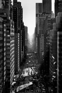 Streetview by Rob van Kessel